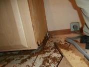 $34,967 Water Leak in Hall Bath