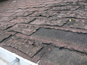 Failure_of_asphalt_shingles_allowing_roof_leakage-300x225