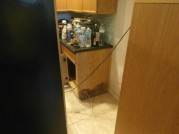 $38,550 Refrigerator Leak