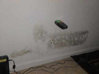 Lauderhill Shower Pan Leak