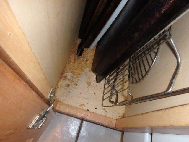 Orlando Dishwasher Leak