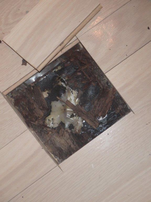Roof Leak Damaging Hardwood Floor Boca Raton
