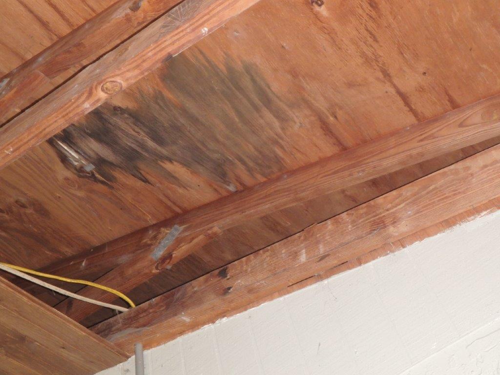 Wind Damage Roof Leak Sebring