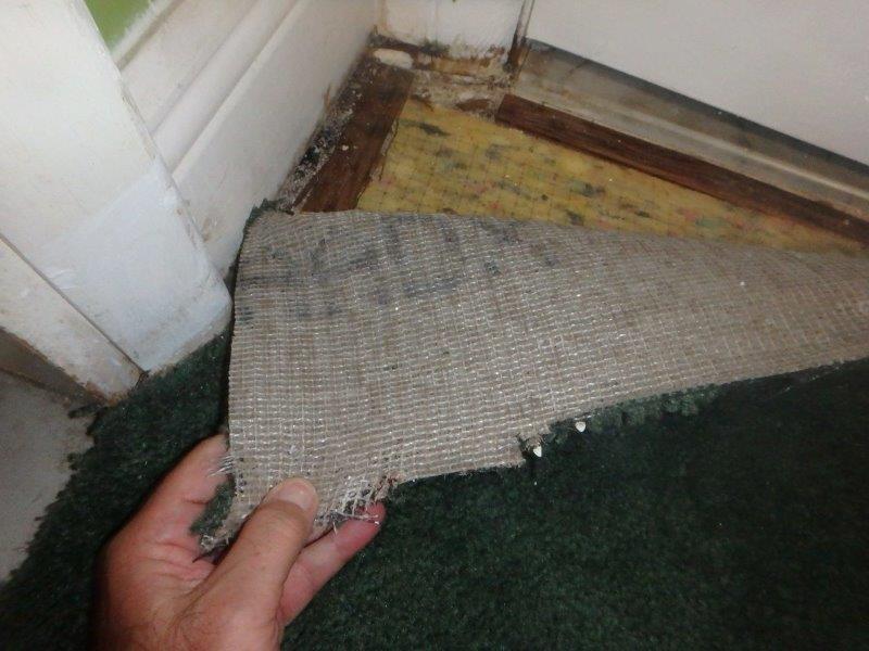 $38,000 Sewer Line Claim
