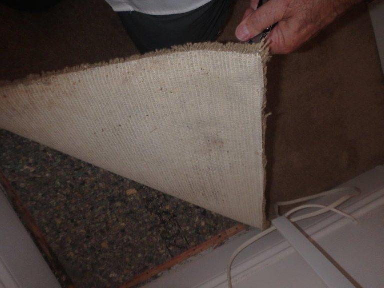 Fort Myers Roof Leak