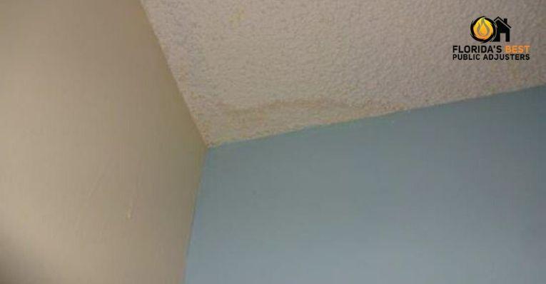 Roof Leak Repair Cost